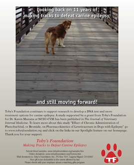 Toby's Foundation 11th Anniversary ad 2